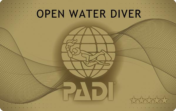 PADI オープンウォーターダイバー ライセンスカード